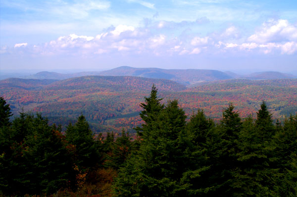 view from spruce knob wv